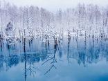 7 สิ่งมหัศจรรย์บนเกาะ ฮอกไกโด ที่มีแค่ในหน้าหนาวเท่านั้นのサムネイル