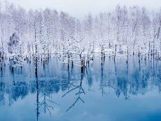 7 สิ่งมหัศจรรย์บนเกาะ ฮอกไกโด ที่มีแค่ในหน้าหนาวเท่านั้น
