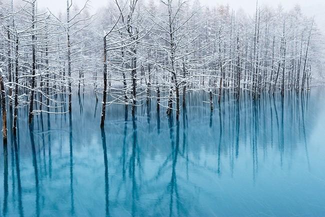 7 Amazing sports Winter Hokkaido