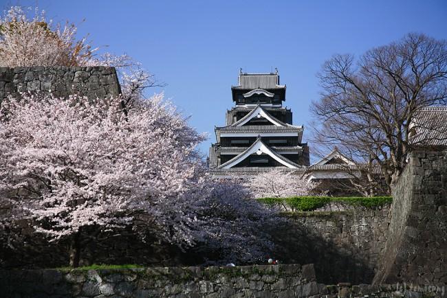 94 kumamoto castle
