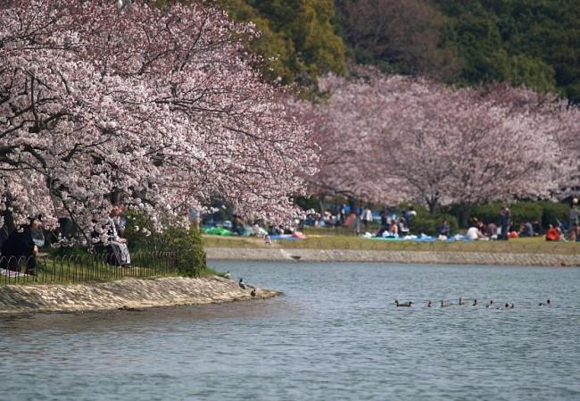 69 Akashi Park