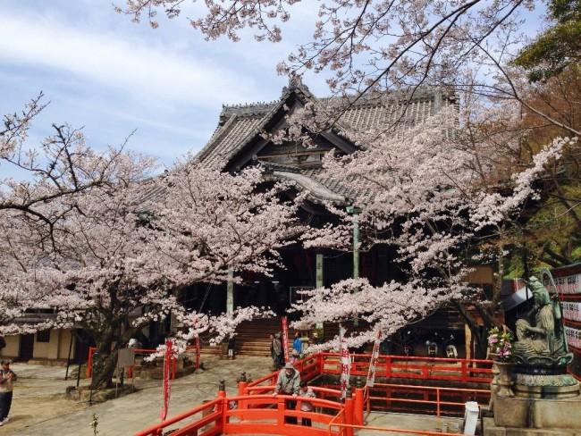 74 Kimiidera Temple