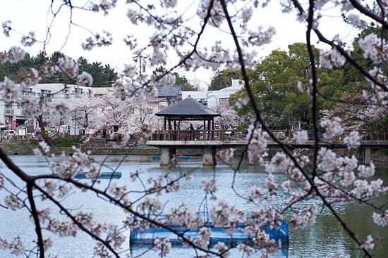 54 Tsurumai Park