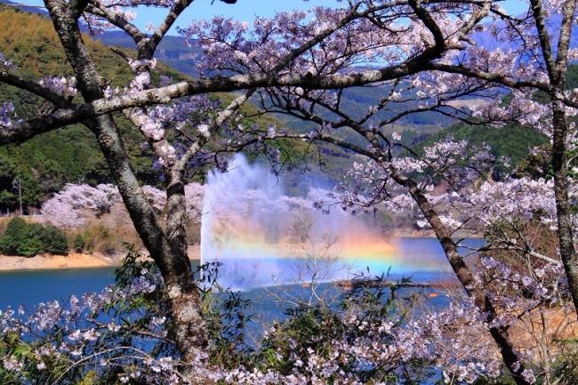 96 ichifusa lake