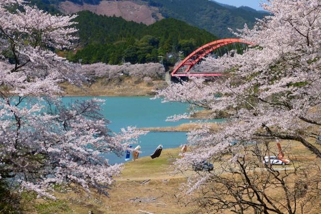 76 nanakawa dam lake