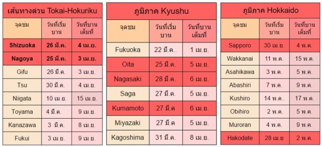พยากรณ์ซากุระบาน 2016