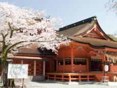 8 ศาลเจ้าญี่ปุ่น เปี่ยมลาภ ไหว้แล้วรวย !