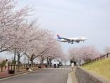 10 ที่ เที่ยวนาริตะ สนุกเพลินได้ใกล้สนามบินのサムネイル