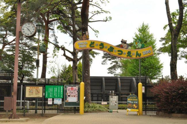omiya_park_zoo_001