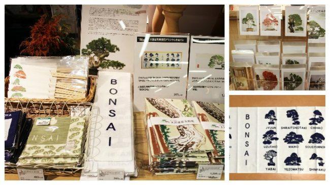 bonsaibijutsukan060-720x405