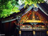 ตามรอยโชกุนโทกุกาวะ อิเอยาซุ ที่ โอกาซากิ เมืองประวัติศาสตร์เอโดะのサムネイル
