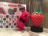เปิดตัวสตรอว์เบอร์รี่พันธุ์ใหม่แห่งชิบะที่งาน Viva Chiba ! Spring Summer Specialのサムネイル
