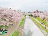 เที่ยวครบสูตร สนุกครบรสที่ Okazaki city เพลินใจในวันเดียวのサムネイル