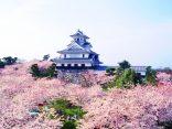 ควงคู่เที่ยวญี่ปุ่นฟรี 2 วัน 1 คืนที่ โอกาซากิ เมืองสวยบรรยากาศโรแมนติก