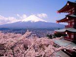 17 ข้อควรรู้ก่อนไปญี่ปุ่น จำไว้ไม่โป๊ะのサムネイル
