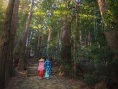 เดินเท้าชมความงดงามเส้นทางแสวงบุญมรดกโลก Kumano Kodo