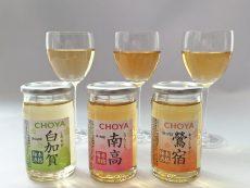 เหล้าบ๊วย choya ราคา ที่ญี่ปุ่นเท่าไหร่ รีวิวรสยอดนิยม
