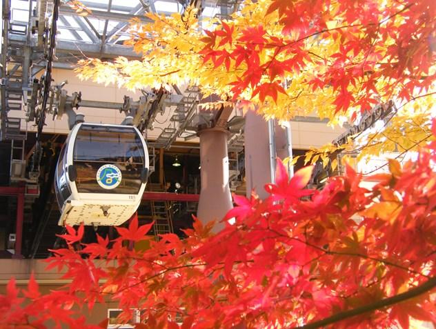 วิวญี่ปุ่นสวยๆ
