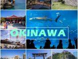 Slow Life In Okinawa ทะเลสวยน้ำใส เกาะทางใต้เที่ยวได้ไม่ยากのサムネイル