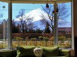 แนะนำ 2 ที่พัก ภูเขาไฟฟูจิ ราคาสุดคุ้ม ชมวิวคาวากูจิโกะประทับใจ