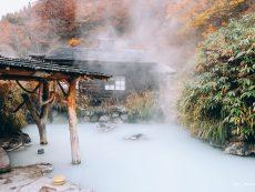อุ่นกายสบายใจ แช่ออนเซ็นน้ำนม ชมใบไม้เปลี่ยนสีที่ Nyuto Onsen