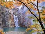 รู้จัก Tohoku อัญมณีแห่งแดนอาทิตย์อุทัย ภูมิภาคน่าเที่ยวที่ไม่ควรพลาดのサムネイル