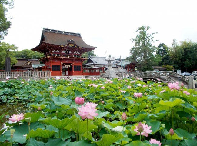 สนุกซัมเมอร์ ณ โอกาซากิ ! เมืองเดียวเที่ยวปริ่มใจ (ตอนแรก)