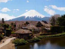 Oshino Hakkai ชมวิวฟูจิซัง สูดอากาศบริสุทธิ์ อาหารสุดอร่อยที่หมู่บ้านน้ำใส