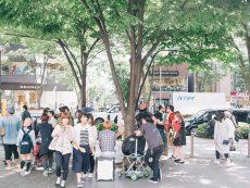 Omotesando ถนนเส้นนี้มีแต่ความสุข จะเดินเล่น ช้อปปิ้ง หรือกินขนมอร่อยก็แฮปปี้