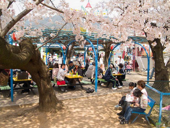 Kobe Zoo