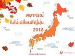 มาแล้ว!!! พยากรณ์ใบไม้เปลี่ยนสีญี่ปุ่น 2018 เตรียมวางแผนก่อนใครได้ที่นี่のサムネイル