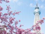 5 กิจกรรมไม่ควรพลาดเมื่อไปเยือน โตเกียวสกายทรีのサムネイル