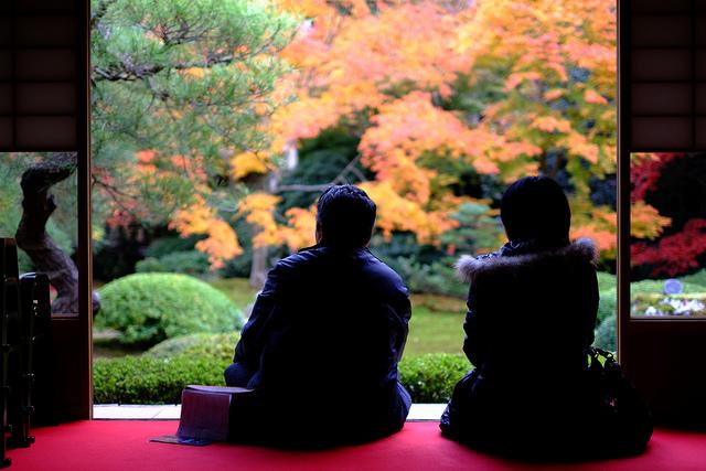 เที่ยวญี่ปุ่นเดือนพฤศจิกายน