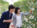 เปิดพิกัด ทัวร์ผลไม้ญี่ปุ่น ใกล้โตเกียว อร่อยจุใจ ทานได้ไม่อั้น กับผลไม้นานาพันธ์ุのサムネイル