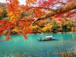8 พิกัดชม ใบไม้เปลี่ยนสี เกียวโต บรรยากาศดีที่คุณต้องหลงรักのサムネイル
