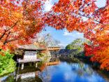 """10 สถานที่ท่องเที่ยวเมือง """"Wakayama"""" ที่สายถ่ายรูปห้ามพลาด!!のサムネイル"""