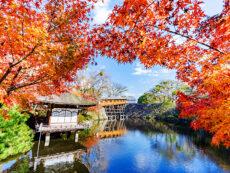 """10 สถานที่ท่องเที่ยวเมือง """"Wakayama"""" ที่สายถ่ายรูปห้ามพลาด!!"""
