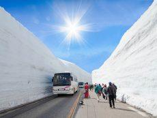20 ที่ท่องเที่ยวจุใจ ที่ Nagano เมืองออนเซ็น หิมะ และธรรมชาติ