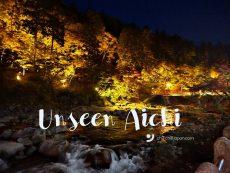 ขับรถเที่ยว Chubu ตอนที่ 2 : Unseen Aichi ชมวิวใบไม้เปลี่ยนสีสุดอเมซิ่ง
