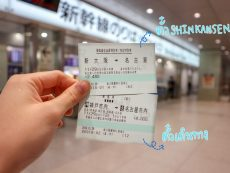 How to เดินทางจากโอซาก้าไป โอกาซากิ เมืองน่ารัก สะดวกสบาย ไม่ยากอย่างที่คิด