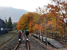 ขับรถเที่ยว Chubu ตอนที่ 5 :  Unseen Gifu เที่ยวครบรสในอ้อมกอดขุนเขา