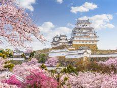 รวมที่เที่ยวญี่ปุ่นสุดฟิน เที่ยวได้ทั้งปีไม่มีเบื่อ ตอน เที่ยวญี่ปุ่นฤดูใบไม้ผลิ