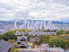 เที่ยว Ehime เมืองเจ้าหญิงผู้อ่อนหวาน แห่งภูมิภาคชิโกกุ