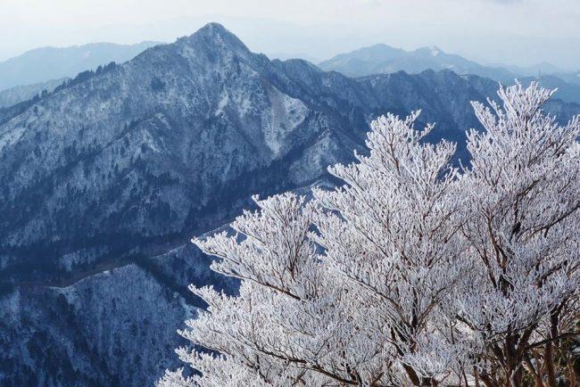 เที่ยวญี่ปุ่นหน้าหนาวที่ มิเอะ ทั้งจุกทั้งฟิน แบบจัดเต็ม