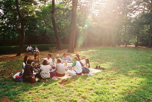 Japan picnic