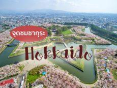 6 พิกัดชม ซากุระ ฮอกไกโด พร้อมวิธีเดินทาง