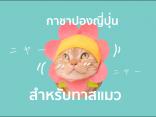 รวม 10 กาชาปอง ญี่ปุ่น  สำหรับทาสแมวโดยเฉพาะのサムネイル