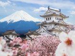 สายมูเตลู มารวมกันตรงนี้ กับทริคดีๆ ที่ทำให้ได้กลับ ไปเที่ยวญี่ปุ่น อีกครั้ง!!のサムネイル