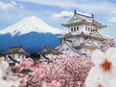 สายมูเตลู มารวมกันตรงนี้ กับทริคดีๆ ที่ทำให้ได้กลับ ไปเที่ยวญี่ปุ่น อีกครั้ง!!