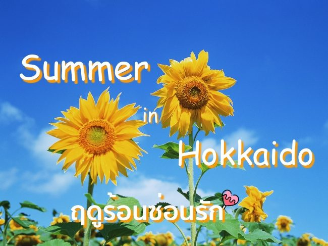 ตะลุย 11 ที่เที่ยว Hokkaido Summer  เริงร่าไปกับฤดูร้อนซ่อนรัก